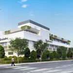 Breaking Ground: Miami Beach hotels undergo multimillion-dollar renovations