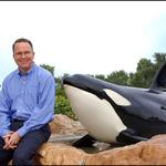 SeaWorld sees major drop in attendance at US theme parks