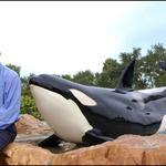 SeaWorld's <strong>Jim</strong> <strong>Atchison</strong> weighs in on 'Blackfish'