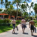 Hawaii aquarium bill pits tour companies against fish collectors