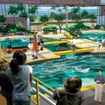 Scientology officials have 'questions' about Clearwater Marine Aquarium's downtown expansion plans