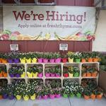 Fresh Thyme hires local workers for 2nd Cincinnati store