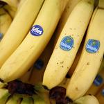 Up To Speed: Chiquita, Fyffes cite more cost savings in impending inversion
