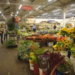 Kilroy to announce new 'commitments' to preserve Flower Mart (Video)
