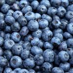 Hood River blueberry outfit nabs $100K-plus loan from Whole Foods