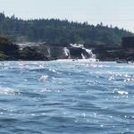 State kicks in $7.5M for Oregon City's Willamette Falls project