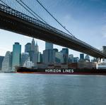 Horizon Lines names Steve Rubin CEO, president