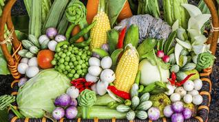 Would you buy fresh fruits, vegetables and meats online?