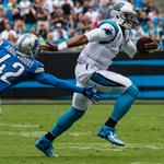 Panthers' TV audience declines by 21%