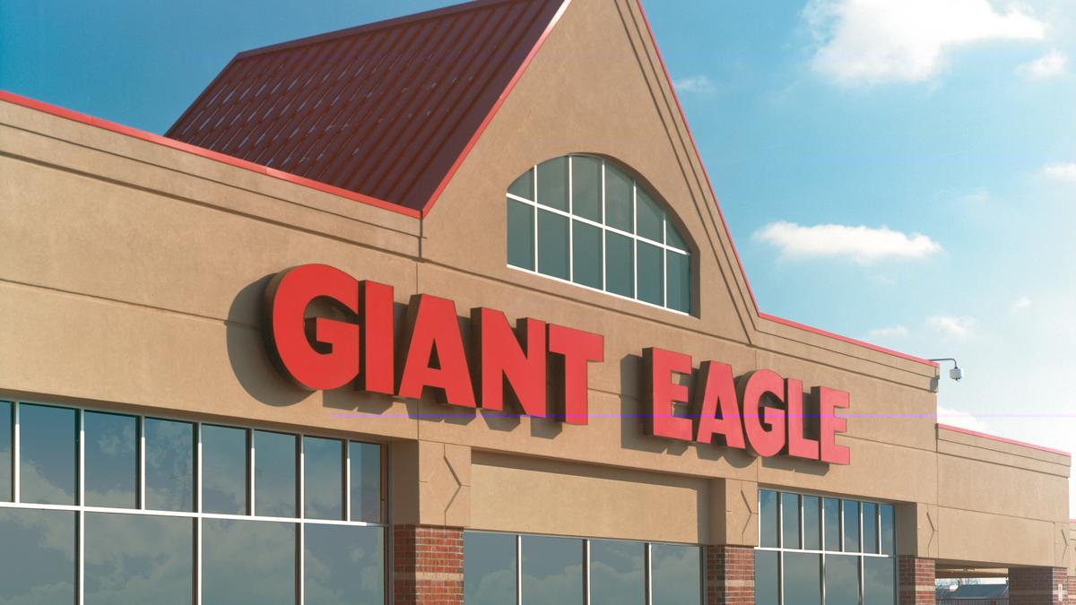 giant bald eagle reports articles