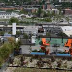 South Lake Union missed its chance: Where startups are going instead