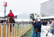 Spectators take photos as horses and their trainers warm up on the track at Pimlico on Wednesday morning.