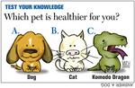 Good health goes to the dogs