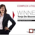2014 Best Corporate Counsel: Complex Litigation