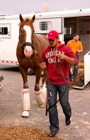No. 7: Will Take Charge trained by D. Wayne Lukas; 12-1 odds as of Thursday morning