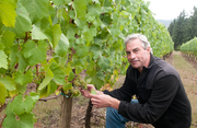 Tony Rynders has been hired by Bacchus Capital Management to make wine for the Panther Creek Cellars brand.