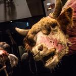 Franklin Institutes takes you inside the animal body with new exhibit (Video)