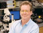 Former Precision Therapeutics CEO helming Pitt spinout