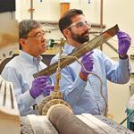 Albany carves a tech niche beyond nano