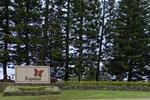 PGA Tour's Hyundai Tournament of Champions tees off on Maui