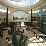 Fighting to stay relevant, Tampa Bay's middle-market malls invest millions to go upscale