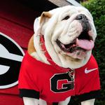 UGA gets okay for $63M <strong>Sanford</strong> Stadium project