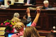 The House of Representatives sat in session for long hours in the last few days.
