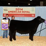 Pattersons set new livestock auction record with $200,000 bid