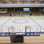 Canisius College promotes assistant coach Large to lead hockey program