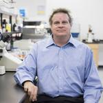 Austin biotech company shares tank on news of cancer treatment's possible regulatory rejection