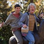 Box-office preview: Is 'Dumb and Dumber To' smart enough to take down 'Big Hero 6'?