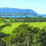 Princeville at Hanalei resort's entrance to get an upgrade