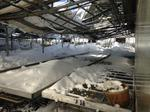 Several greenhouses collapse at Amos Zittel & Sons