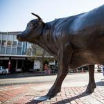 N.C. has abysmal per-capita income growth in 2013