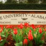 University of Alabama has the fastest-growing enrollment among flagship schools