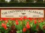 Blast Furnace alum leading University of Alabama accelerator