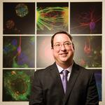 Can stem cell institute heal itself?: New CEO of CIRM wants to build faster, more decisive organization