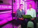 Venture-backed Freight Farms growing its Boston headquarters