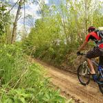 William Penn Foundation gives $8.6M for 750-mile bike trail project