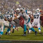 Carolina Panthers stifle Arizona for playoff win (PHOTOS)