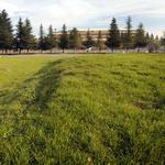 Granger sketches sweeping plan for Natomas arena site