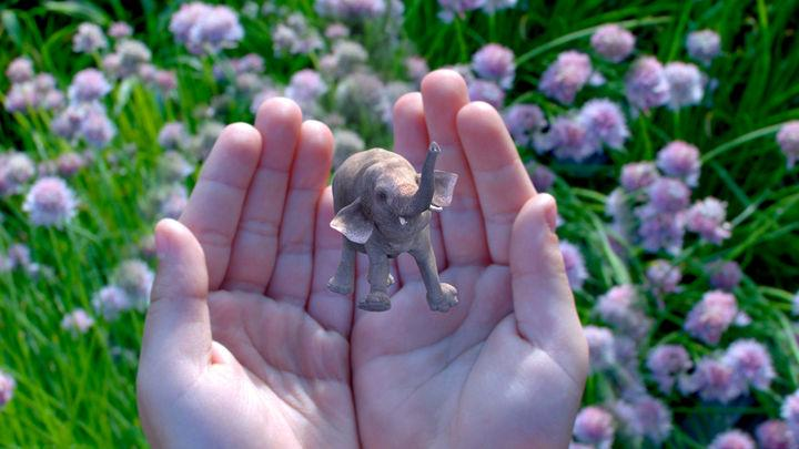 Magic Leap image features a tiny elephant.