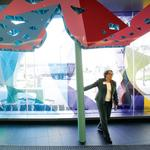 UCSF's new Mission Bay campus rides the hospital wave