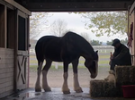 Meet the agencies behind Sunday's Super Bowl ads