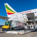 Boeing Roundup: $1.3B Ethiopian Airlines order… Supply chain management overhaul… Holiday gifts