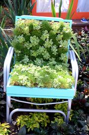 A lawn chair becomes a planter in the Backyard Play Garden.