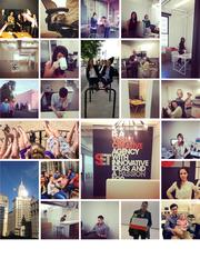 #38: SETGrowth: 132.57%Local senior executive: Sabina Teshler, Founder and CEO