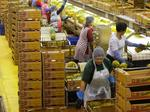 Dole Food aims to go public for third time