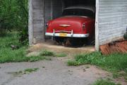 Chickens hide from the rain under an old Chevy.