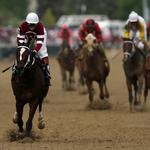 How Panasonic's Julie Bauer used the Kentucky Derby to get a piece of the GoPro pie